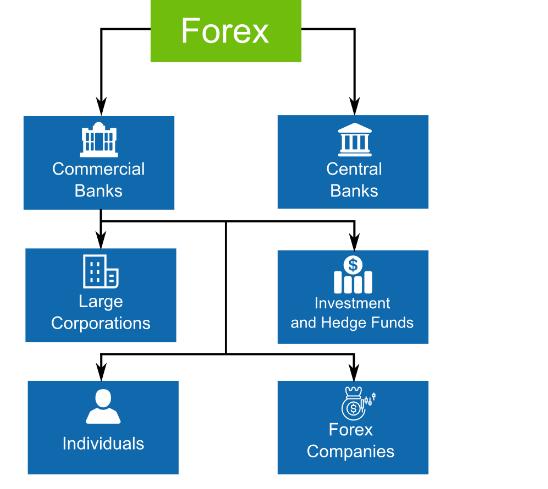 Ai đang tham gia trên thị trường Forex, chứng khoán?