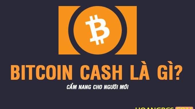 Bitcoin Cash (BCH) là gì? Ví Lưu Trữ ở đâu? Có nên đầu tư BCH không?