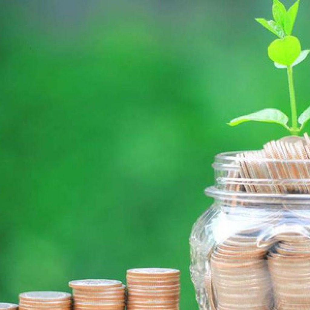 Đầu tư tiền vào thị trường chứng khoán như thế nào?