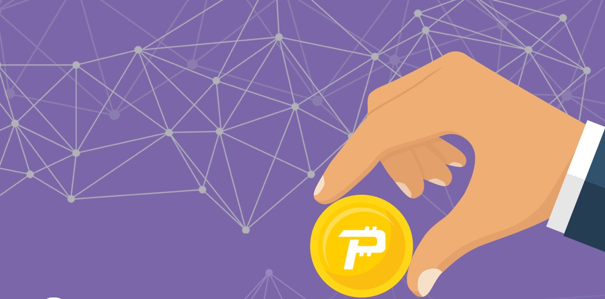PascalCoin là gì? Tìm hiểu về đồng tiền mã hóa PASC