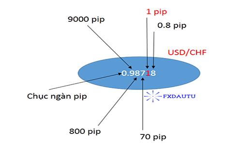 Pip là gì? Cách tính pip và giá trị pip trong forex