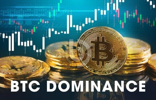 BTC Dominance là gì? Tổng hợp các điều cần biết về Bitcoin Dominance