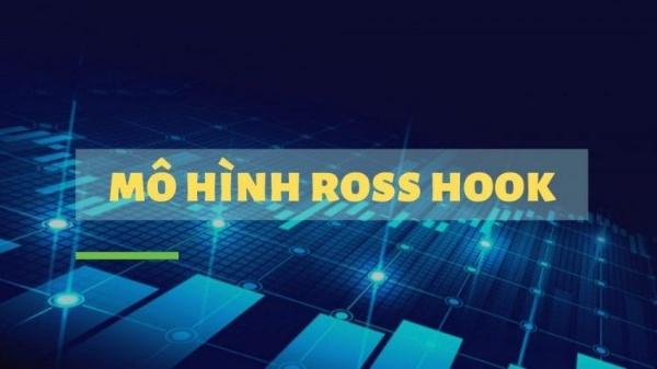 Thông tin mô hình Ross Hook