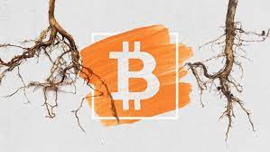 taproot-la-gi-no-mang-lai-loi-ich-nhu-the-nao-cho-bitcoin