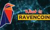 Ravencoin là gì? Thông tin về đồng tiền ảo RVN Coin