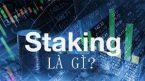 Staking là gì? Tìm hiểu về phương pháp đầu tư tiền điện tử gọi là staking