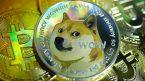 Dogecoin đang phổ biến hơn bao giờ hết bất chấp việc giá sụt giảm
