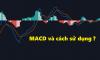 Bật mí những bí mật về chỉ báo MACD